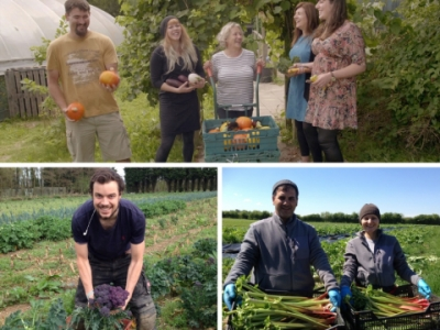 crop drop staff and farmers