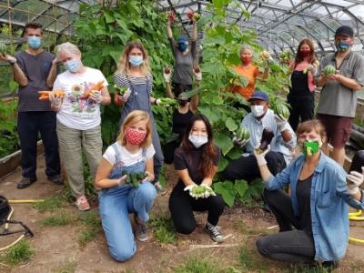crop drop veg packing team