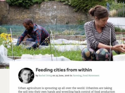 Crop Drop Urban Agriculture