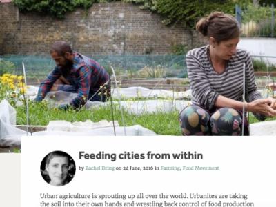 Crop Drop Urban Agriculture