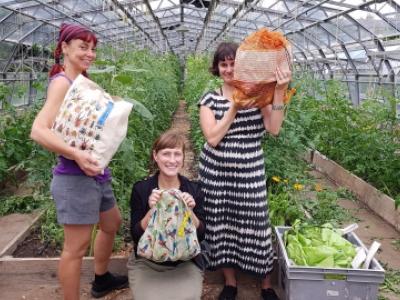 Crop Drop's reusable weekly veg bags