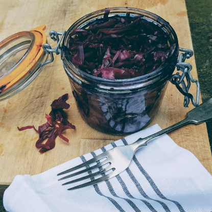 red cabbage sauerkraut