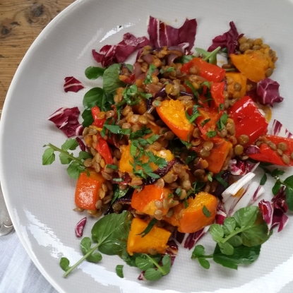 red pepper sqaush salad harissa lentils vegan